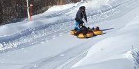 afmr-Do-mi-ski-2019-2